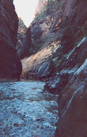 Zion Narrows Trail in the Virgin River, Copyright 2000, OutdoorPlaces.Com, All Rights Reserved